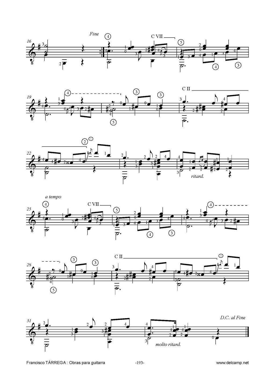 鸽子吉他谱简单版